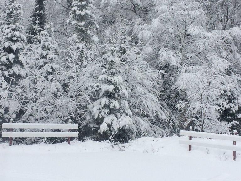 La vie aux Boisés Champêtres - - Accès direct au Parc Régional Dufresne- 6000 acres de Terres de la couronne- Voisin du centre de ski de fonds Far Hills- 80 km de pistes de ski de fond et de sentiers de randonnée pédestre- 14 centres de ski et 9 centres de ski de fond à moins de 30 minutes du projet.