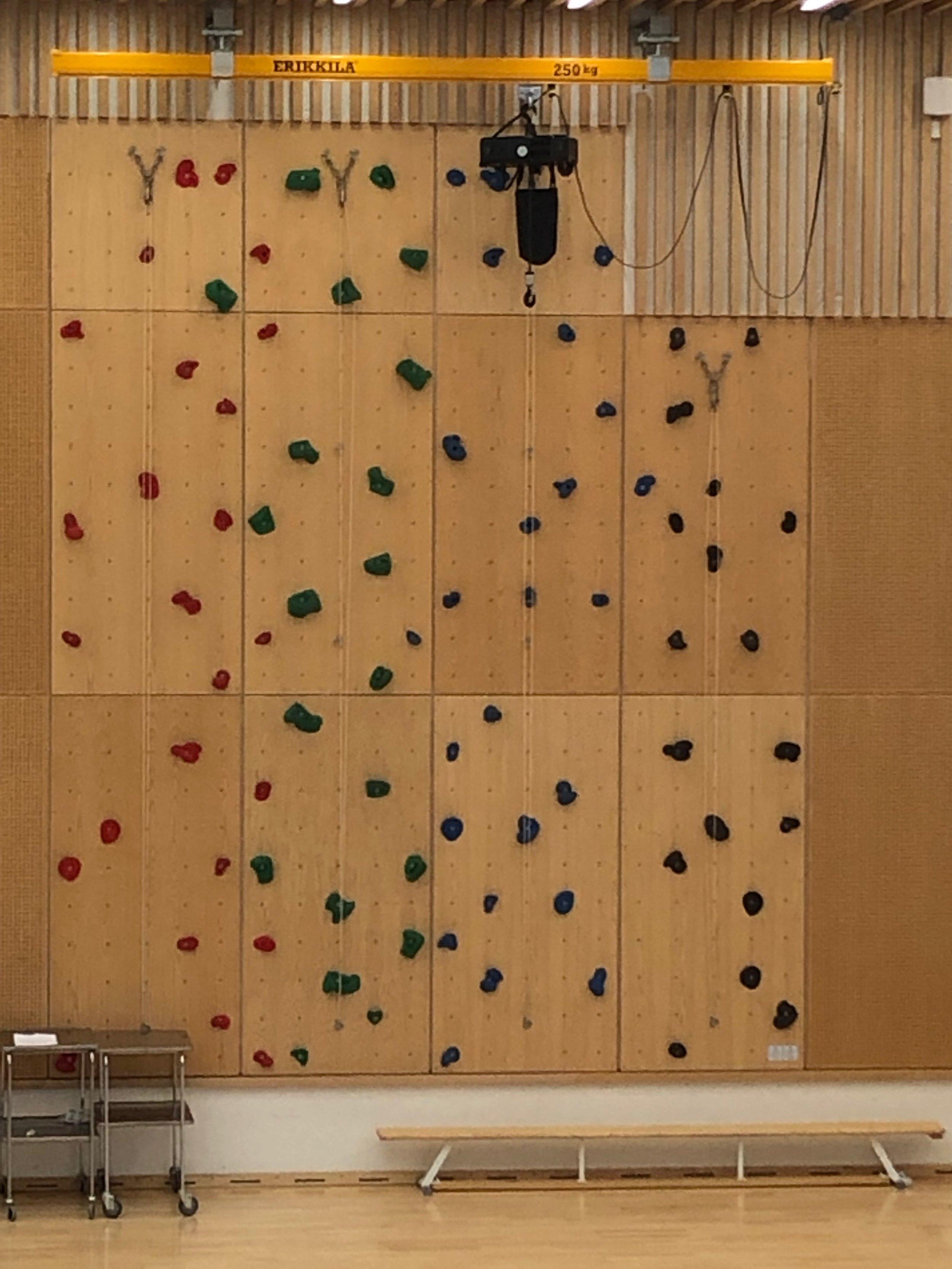 Accessible climbing wall