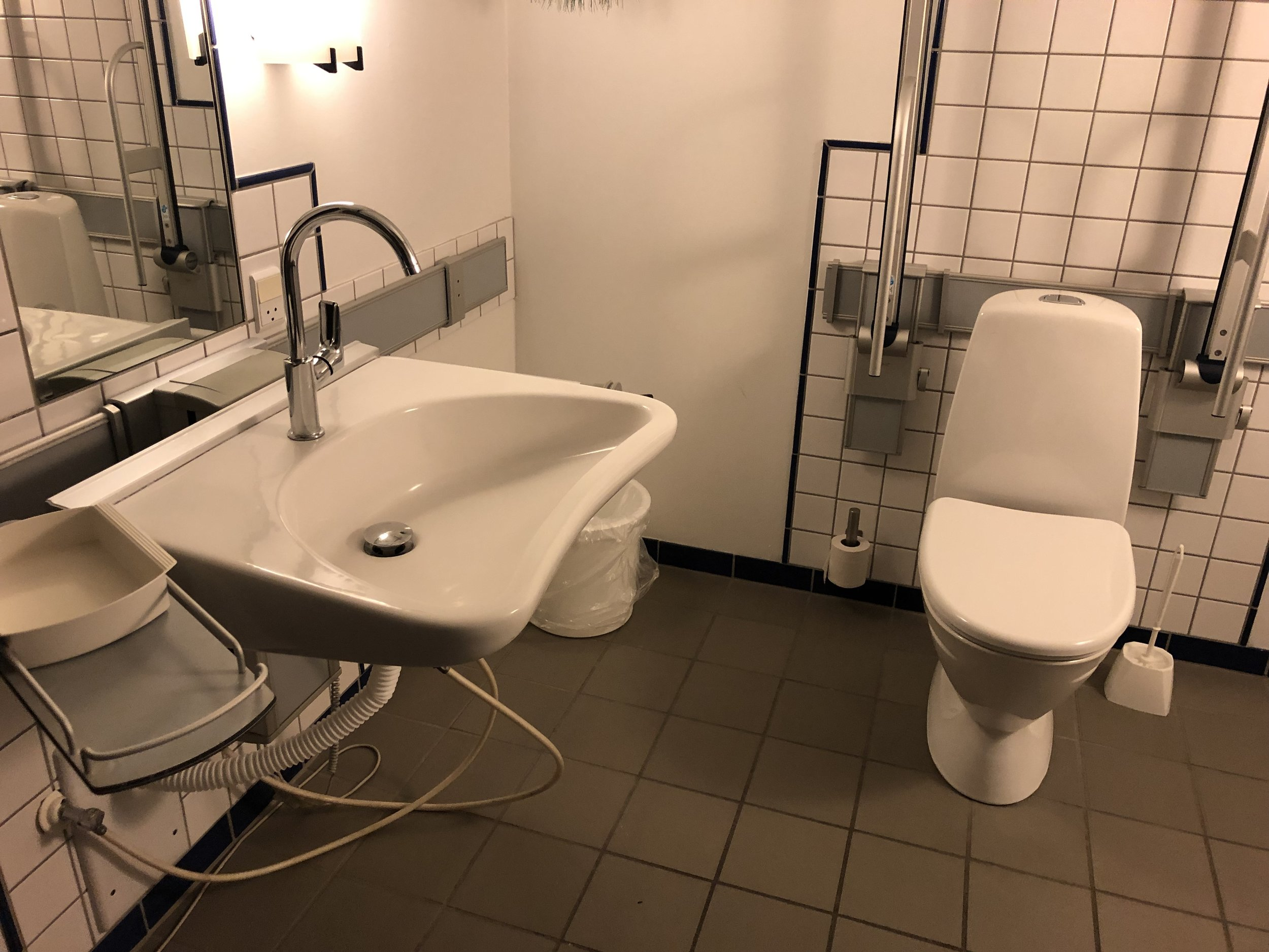 Accessibile toilet and sink