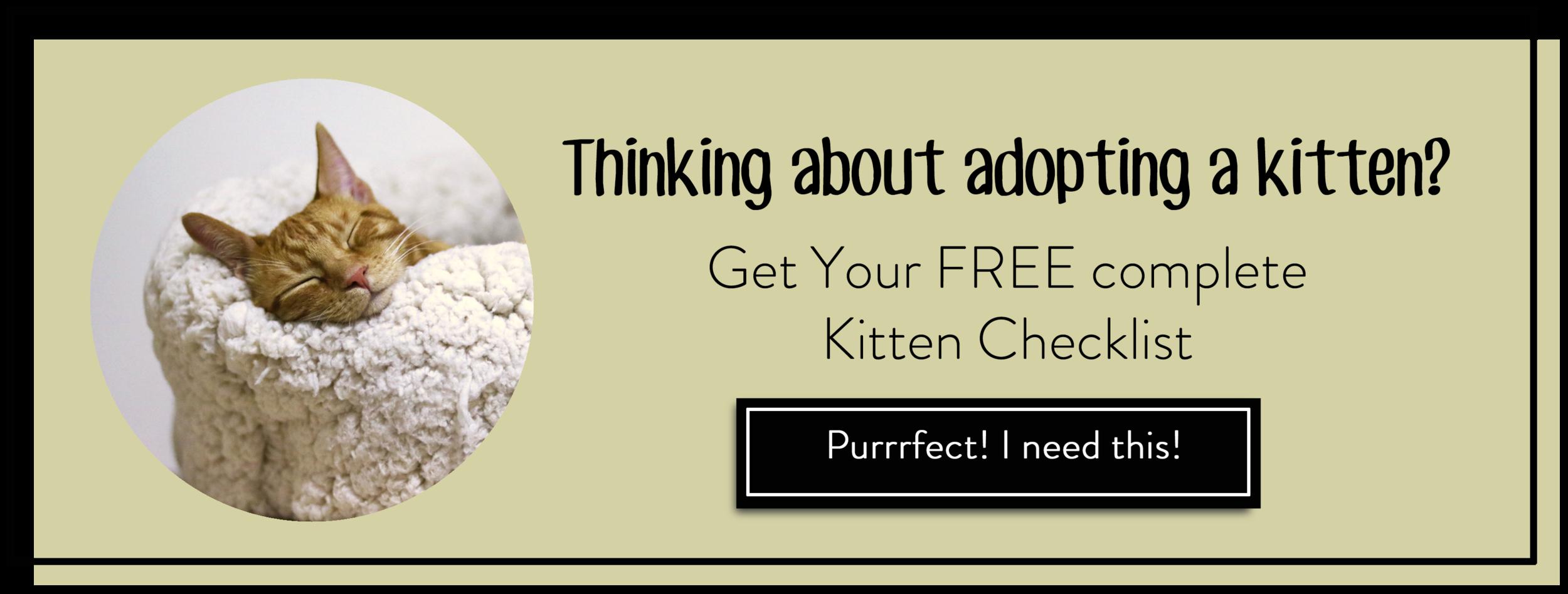 kitten checklist.png