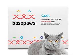 basepaw2s.png