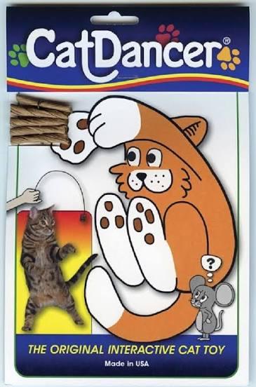 catdancer.png