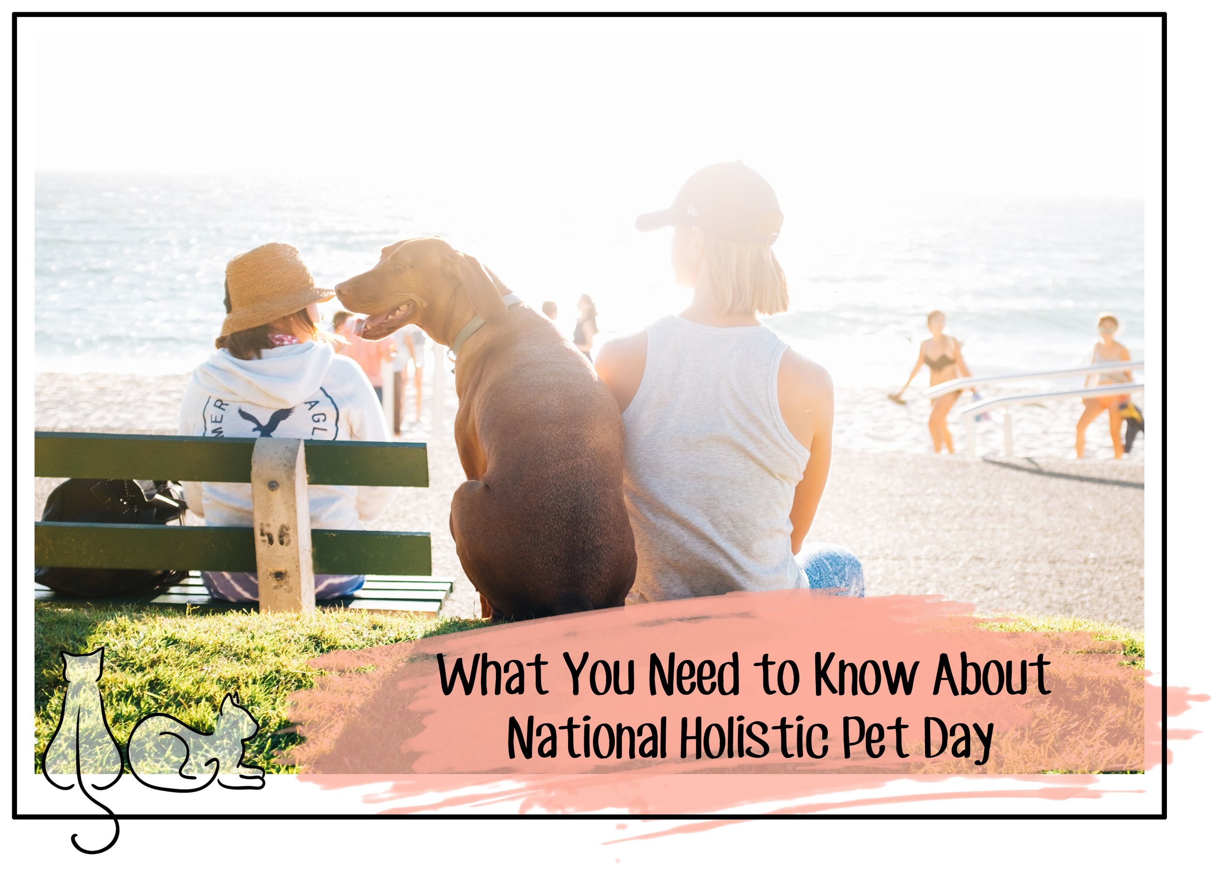 national holistic pet day.jpg