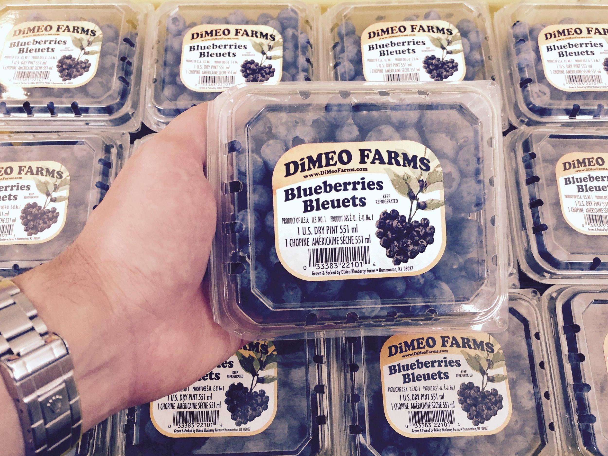 DiMeo Blueberries Farm in New Jersey.jpg