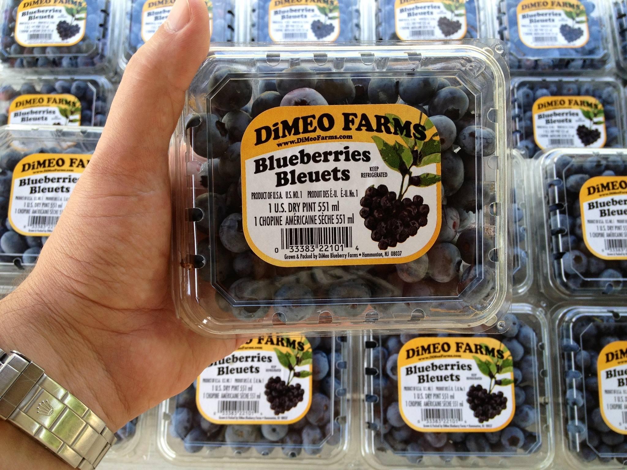 DiMeo Farms Blueberries New Jersey Blueberry Farm.jpg