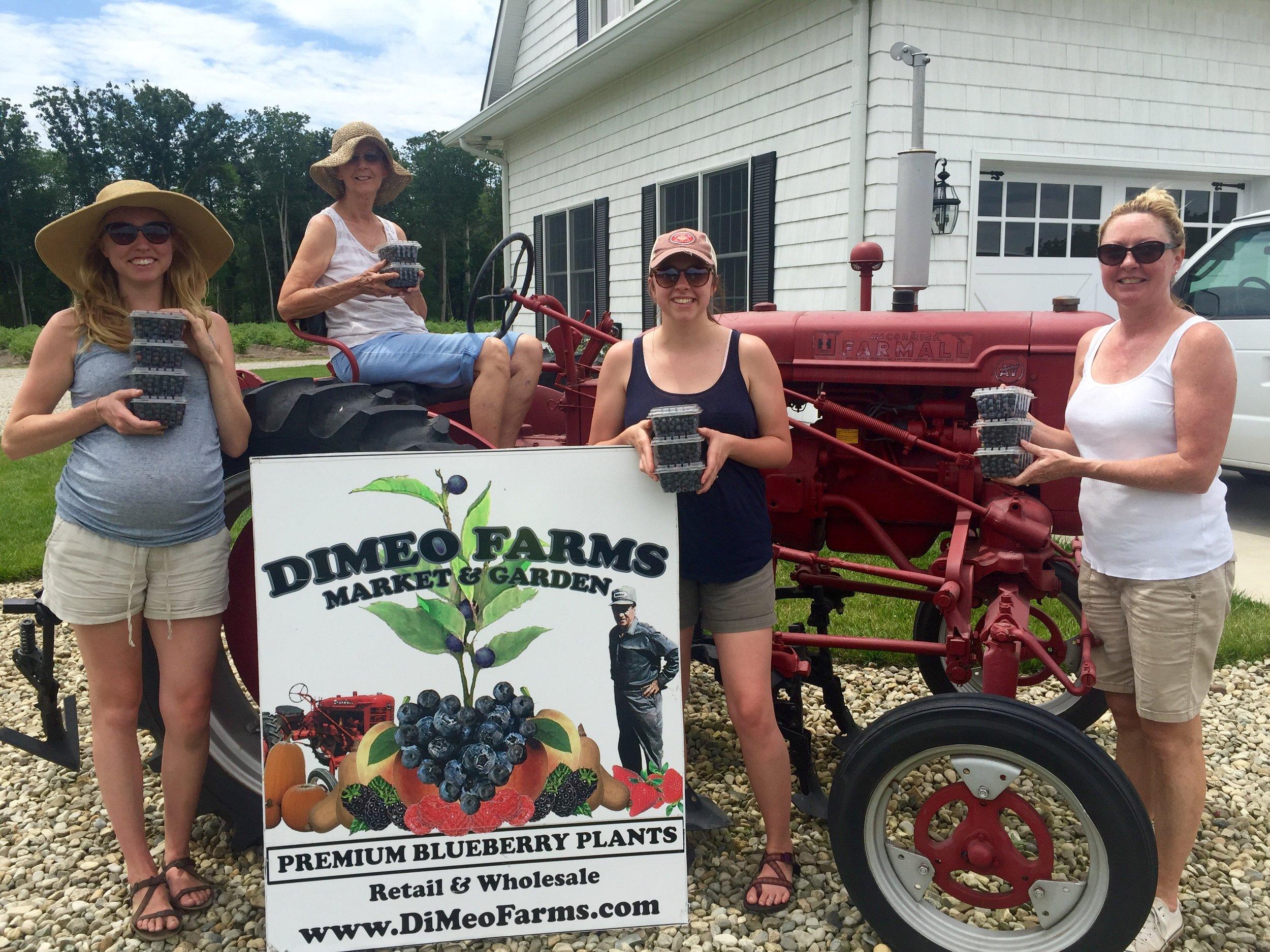 Women Love Blueberry PIcking at DiMeo Farms.jpg