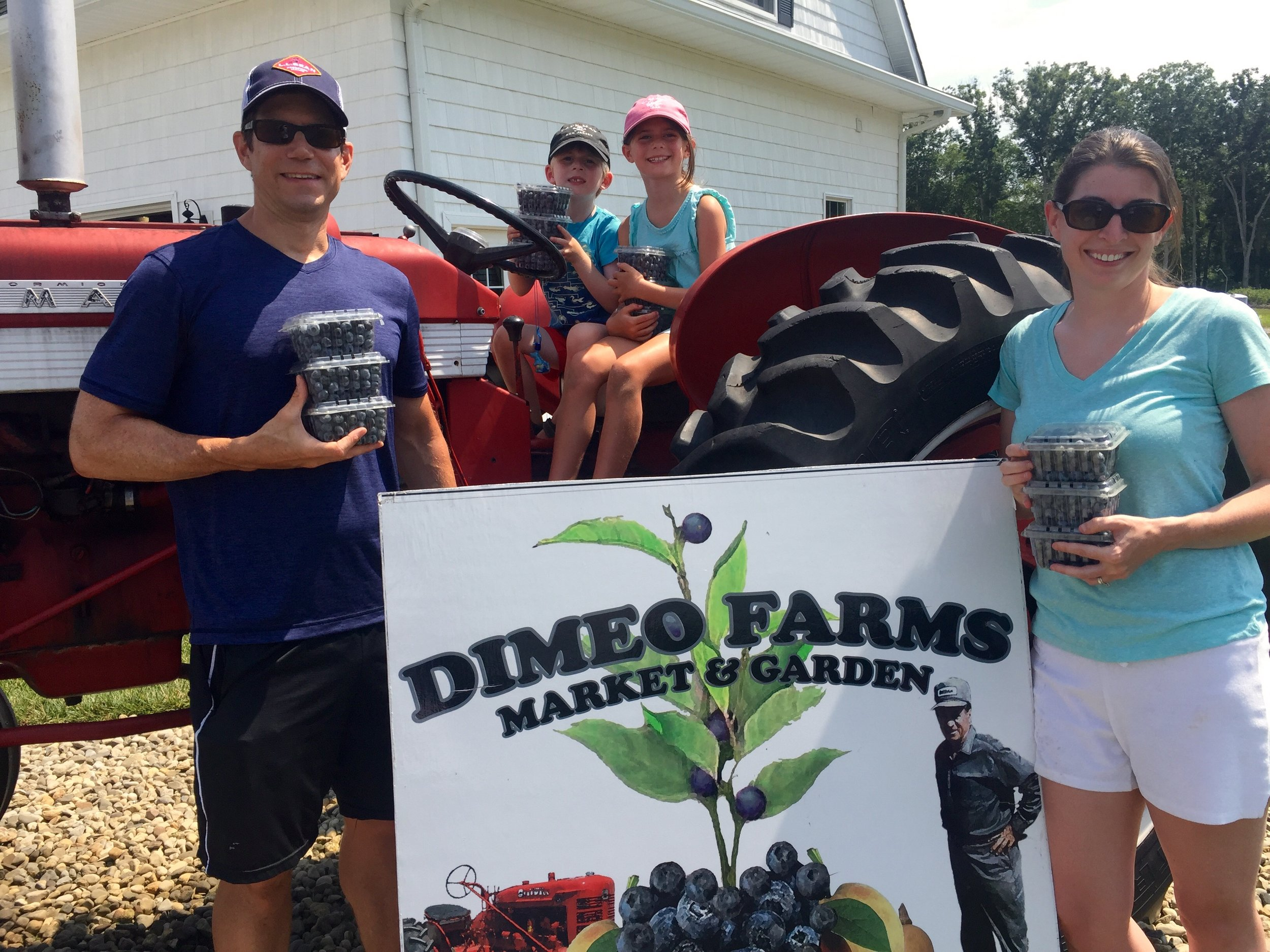 Pick Blueberries in South Jersey at DiMeo's PYO Blueberry Farm.jpg