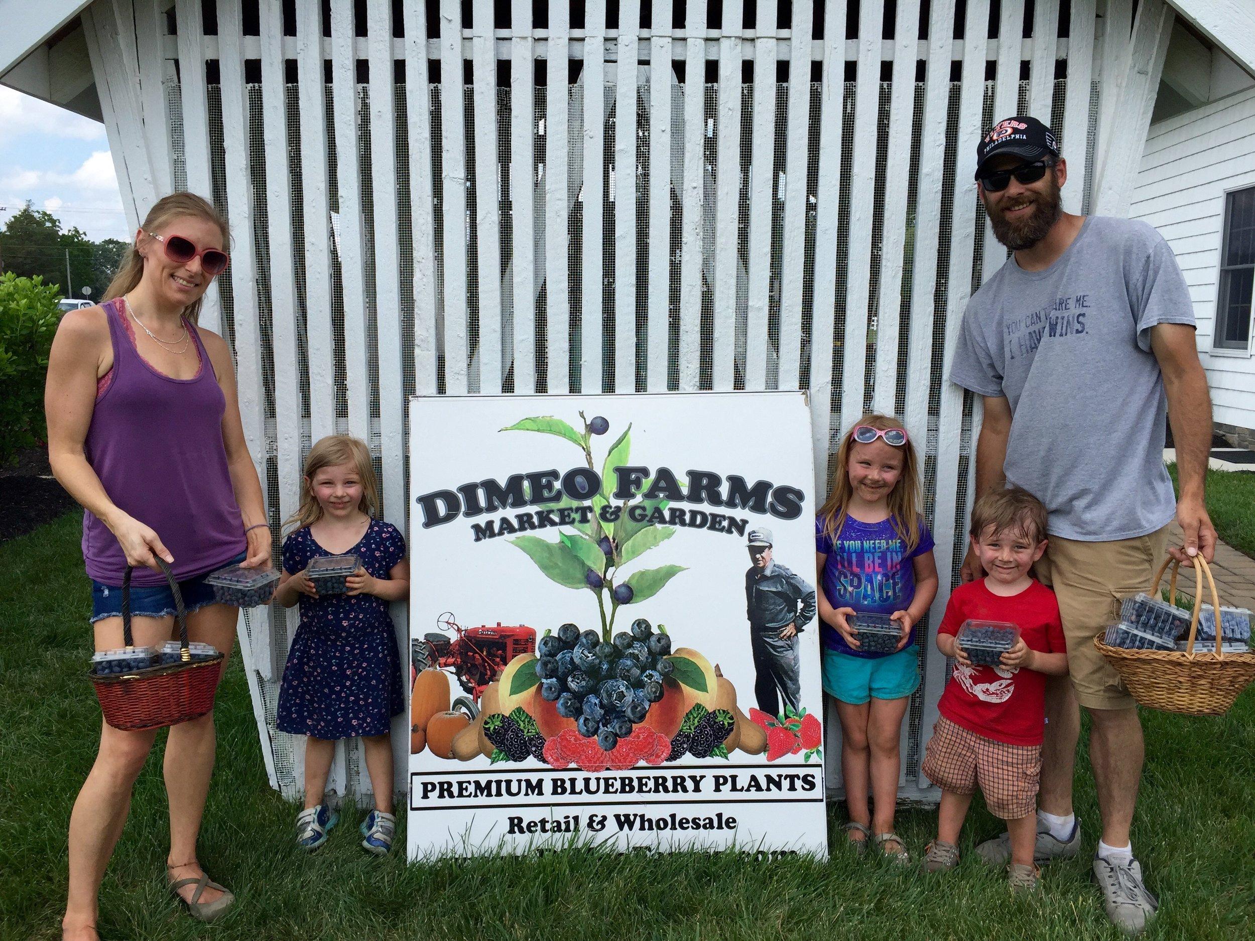 Pick Organic Blueberries Farm in Hammonton.jpg