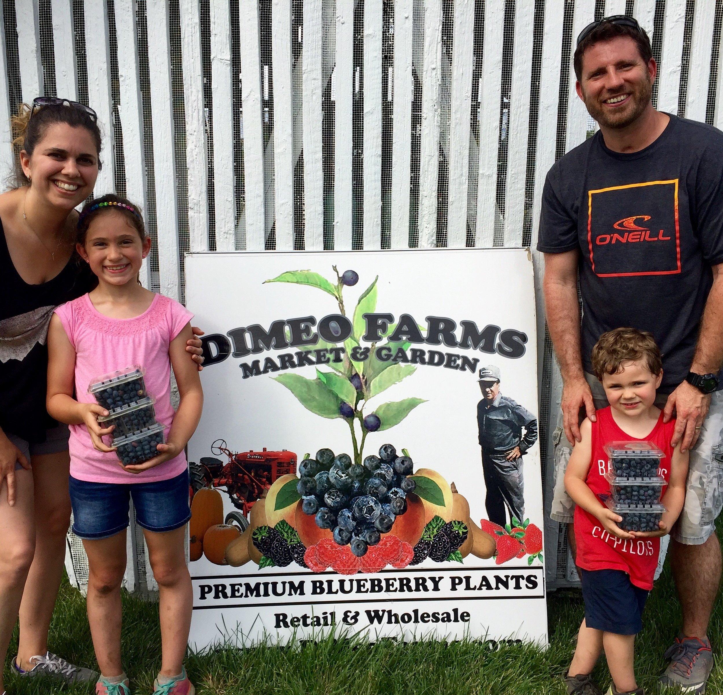 PYO Blueberries Farm in New Jersey.jpg
