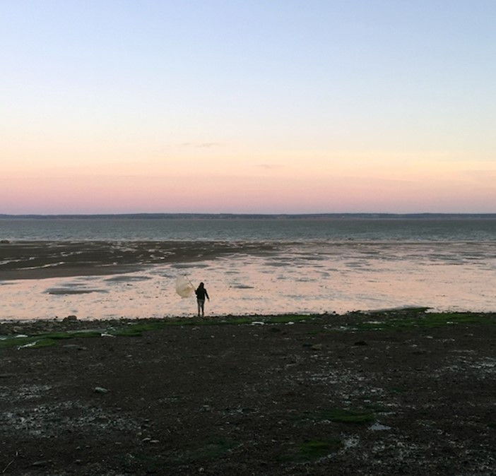 """Listen to """"The Foreshore Listens,""""  a series of audio zines based on the Foreshore discussion sessions with Lindsay Dobbin, Harmony Wagner, Marie Bruge, and Journée sans culture."""