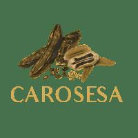 Carosesa Logo