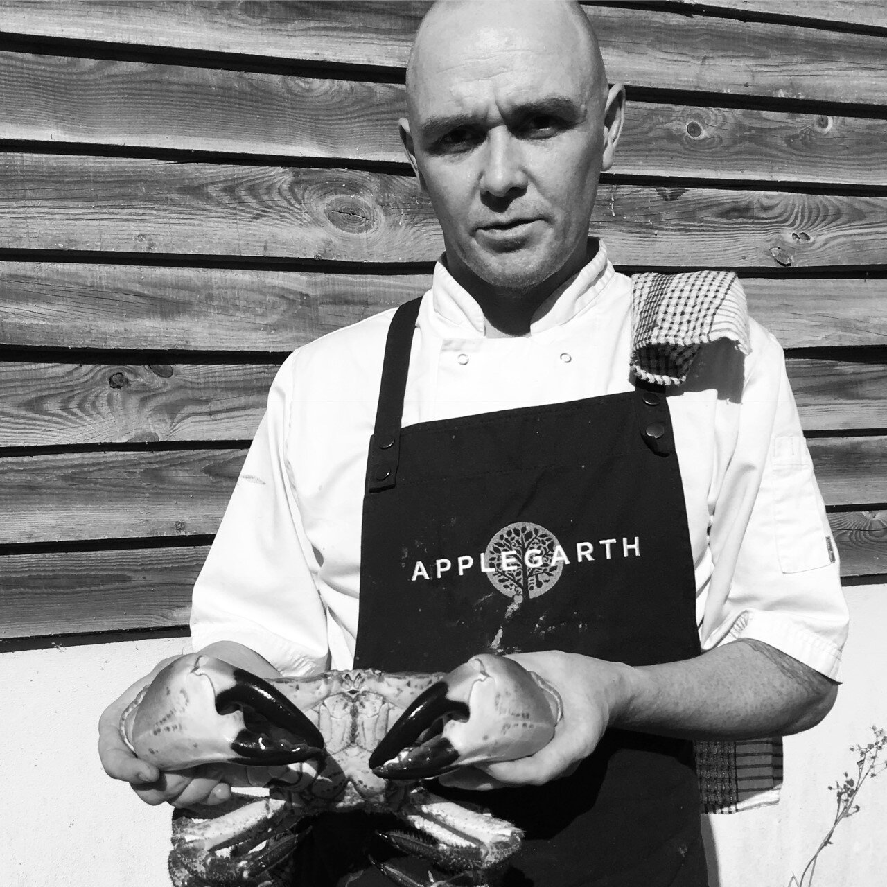 Head Chef Ianto Griffith