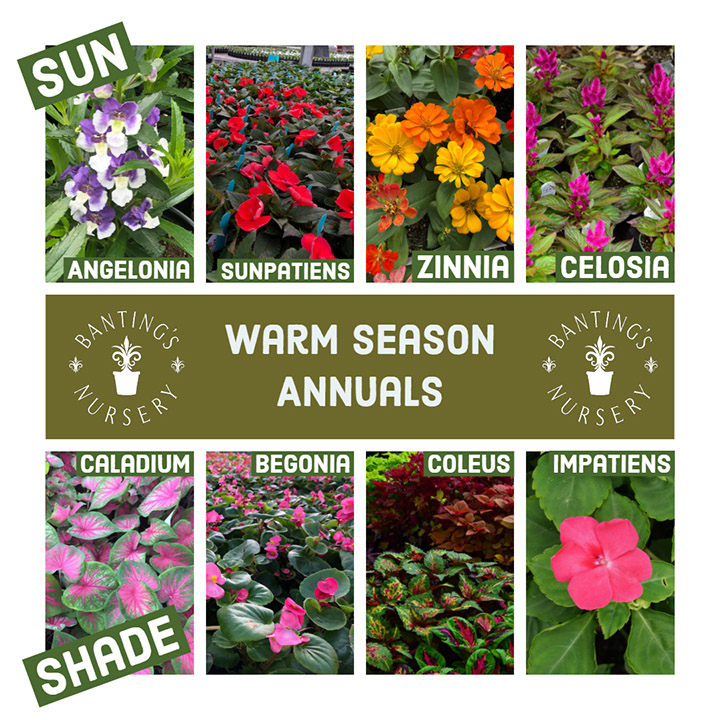 warm season test.jpg