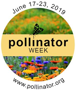 pollinator logo.png