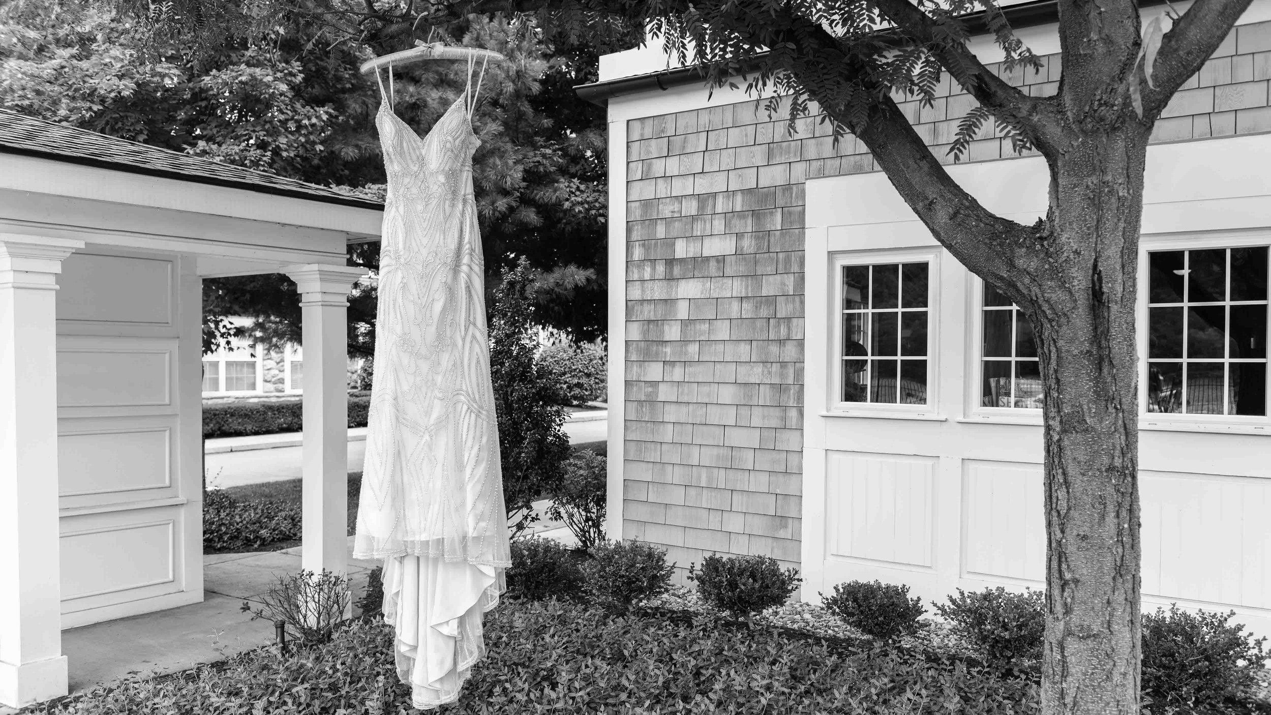 Bride-Wedding-Dress-Hanging-from-Tree-BW.jpg