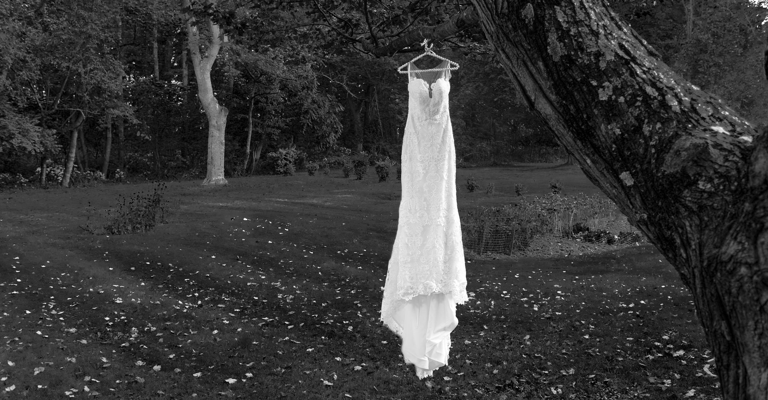 wedding-dress-hanging-from-tree-2.jpg