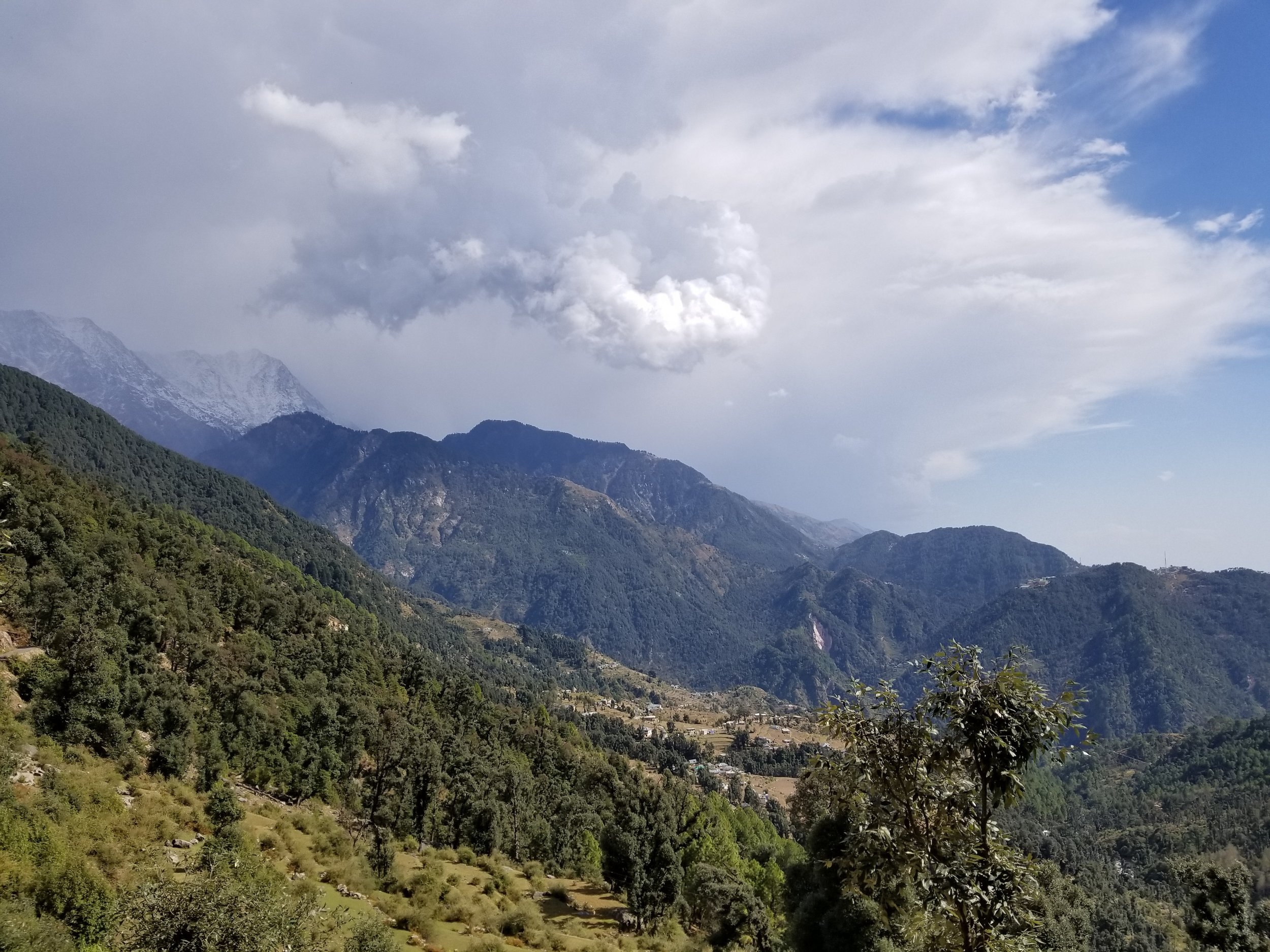 Day Treks with Stunning Views in the heart of Macleodganj.