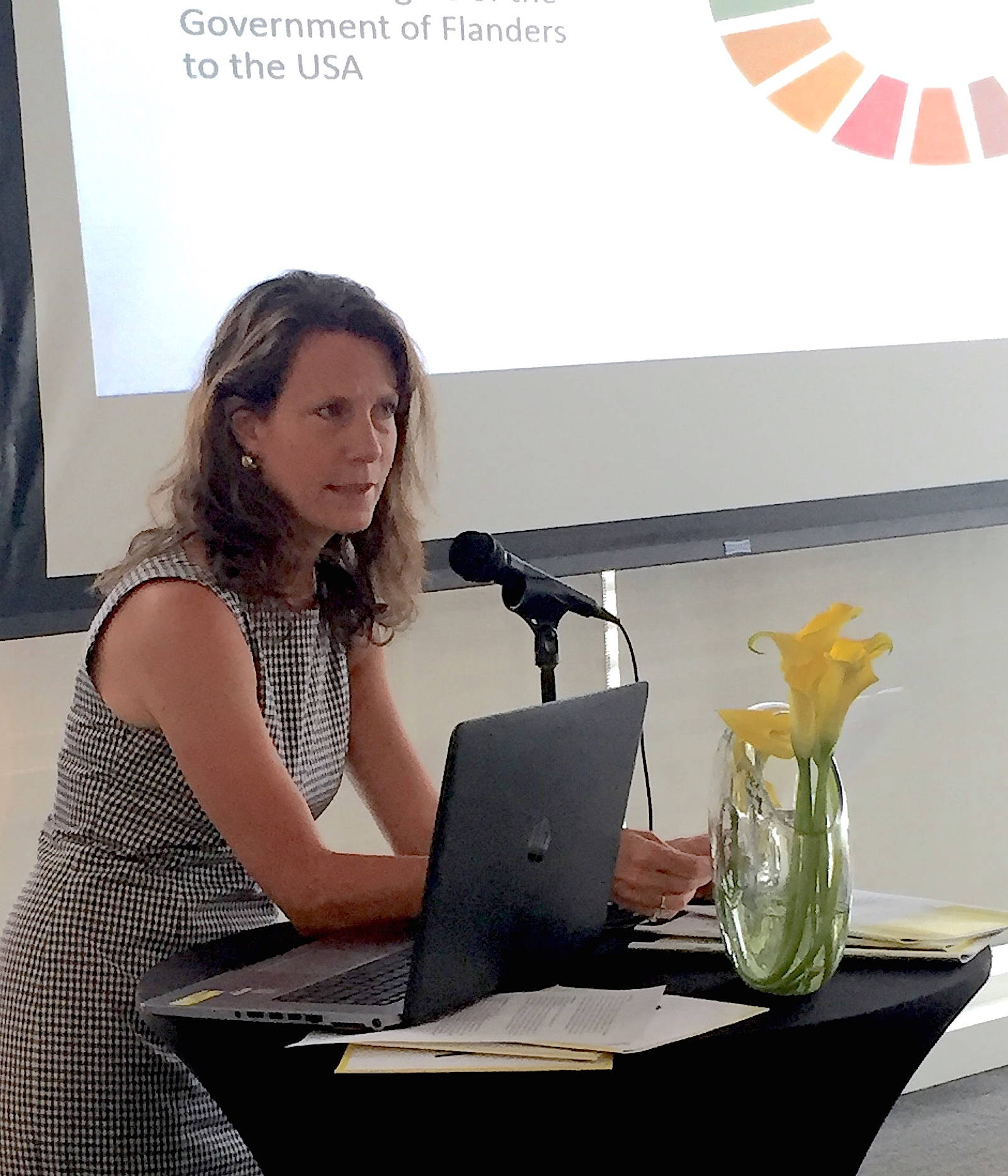 ISSP-NYC Founding Co-Chair Trisha Bauman — Regional Governments and the 2030 SDG Agenda