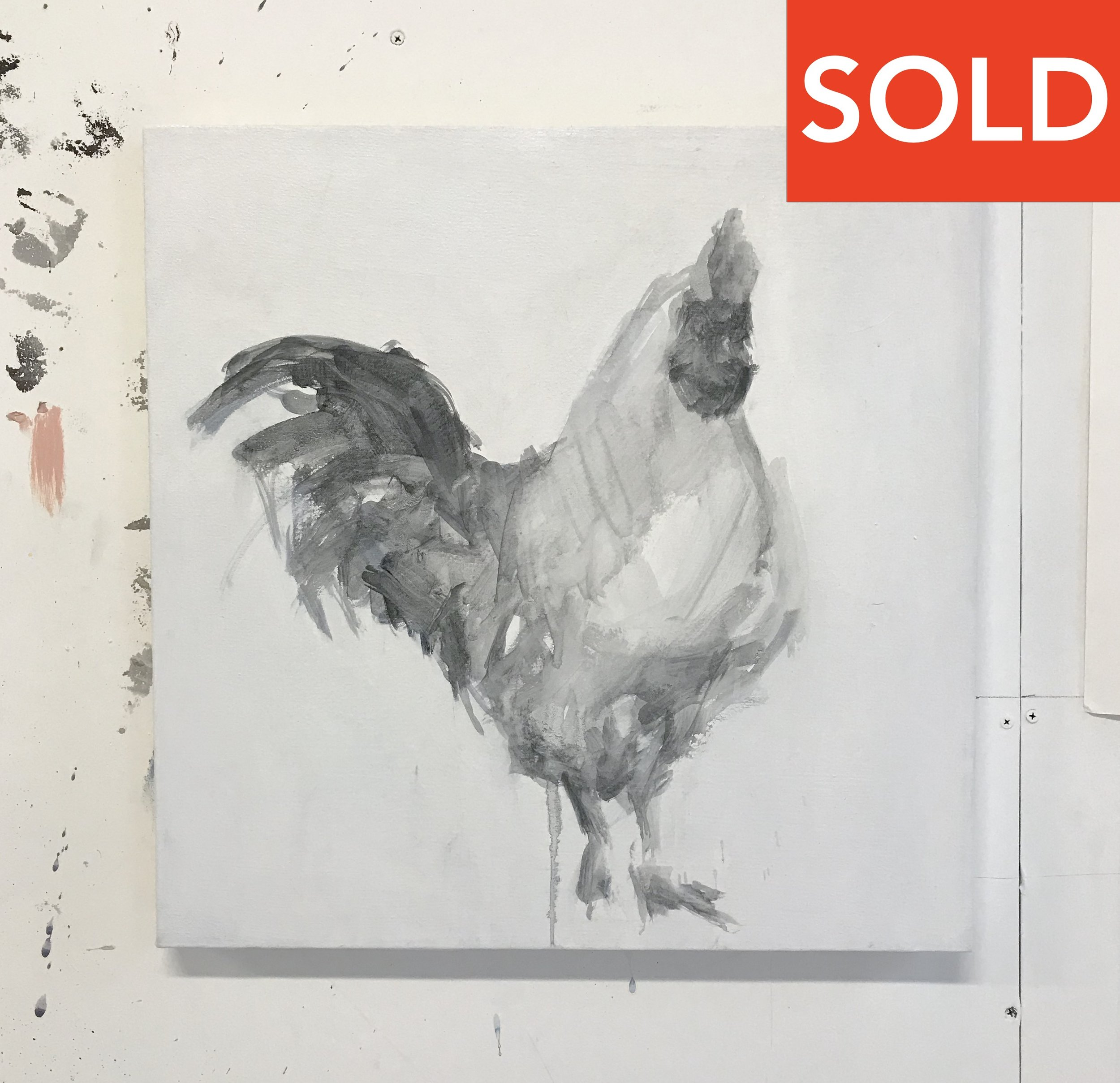 "Rooster 4, 20""x20"", charcoal on canvas, 2014, SOLD"
