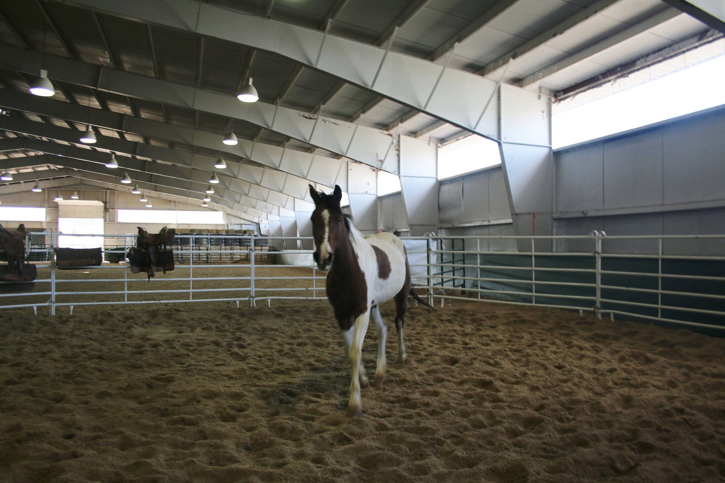 Indoor arena and training center at Harmony. Photo by Carrie Dow.