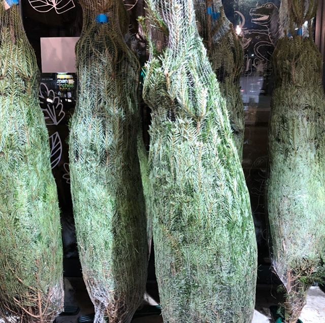 We will be selling Xmas Trees 🌲5/6ft Nordmanns. Fresh with a stand. Last year we sold them for £30 in @ancoatsgs - hoping we can achieve the same this year. Cheapest going! 😜 we will be taking pre orders in Oct/Nov #stretford (sorry for the early seasonal post)