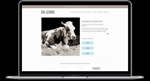 author website in Squarespace