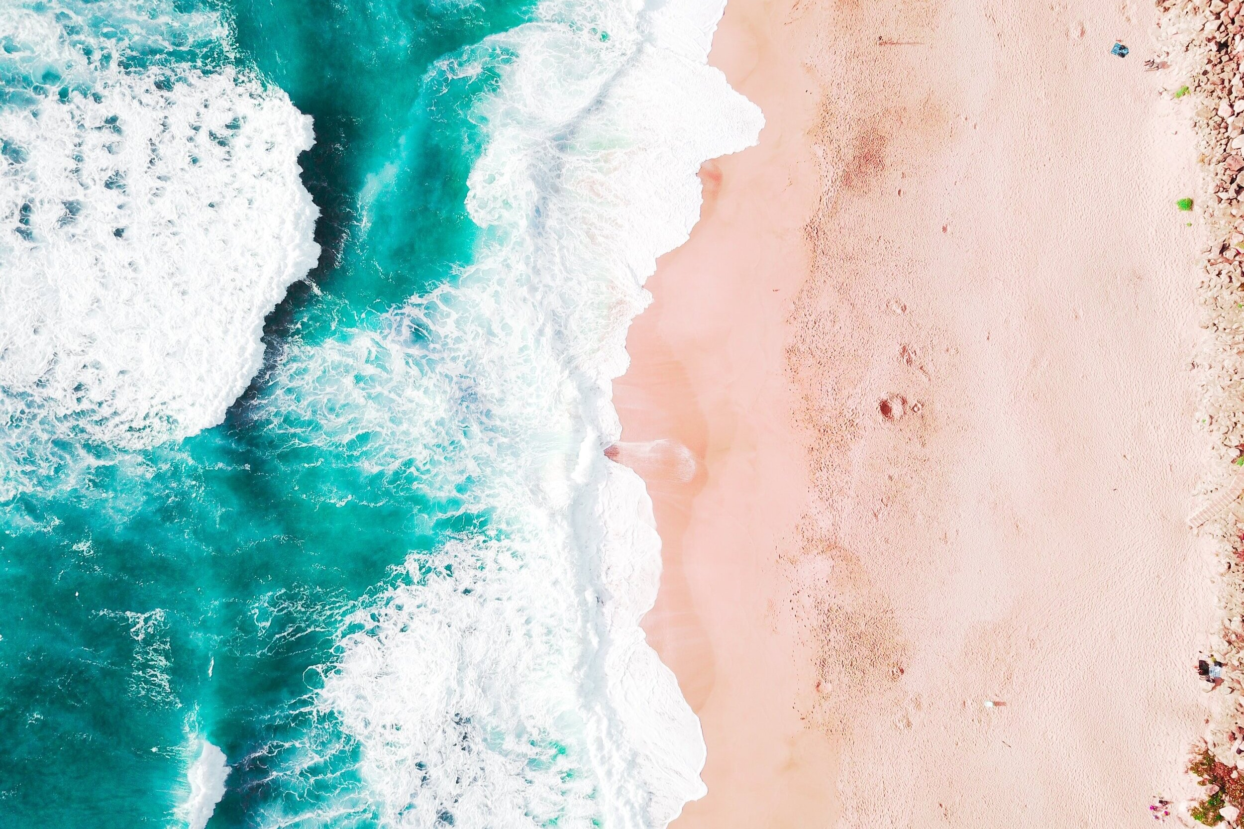 Baja California Sur, Mexico - February 14th - 17th, 2020