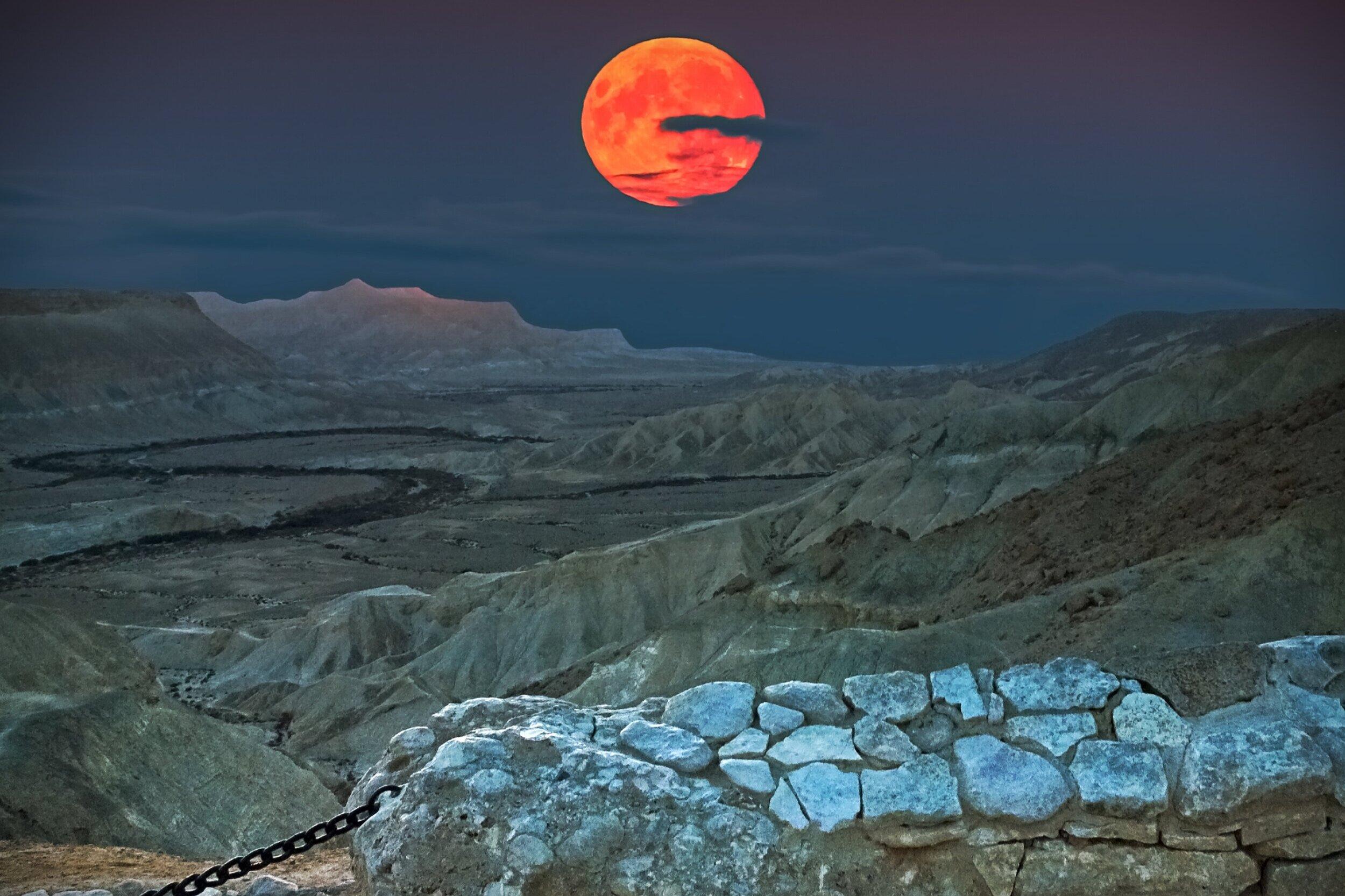 Negev Desert, Israel - March 21 - 27th, 2020