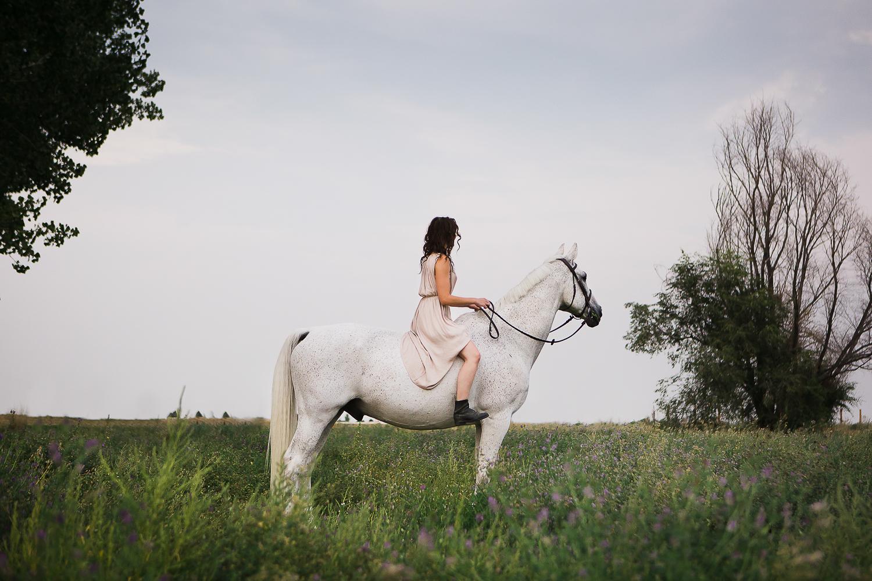 colorado equine photography inspiration_001.jpg