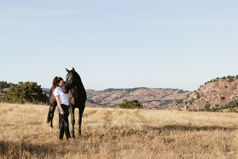 denver equine photography005.jpg