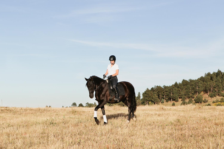 denver equine photography008.jpg