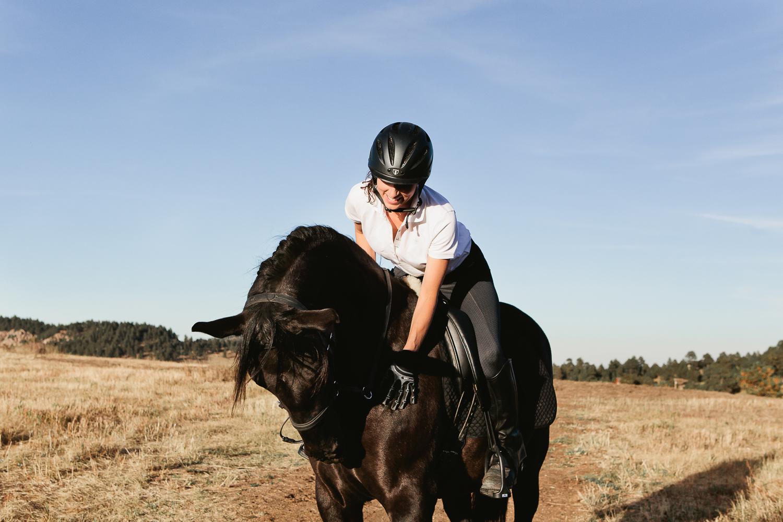 denver equine photography010.jpg