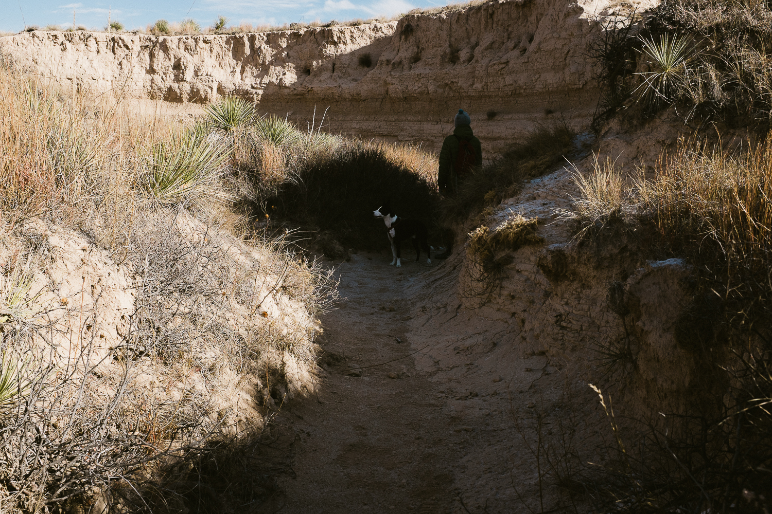 hiking with dogs at pawnee buttes colorado 016.jpg