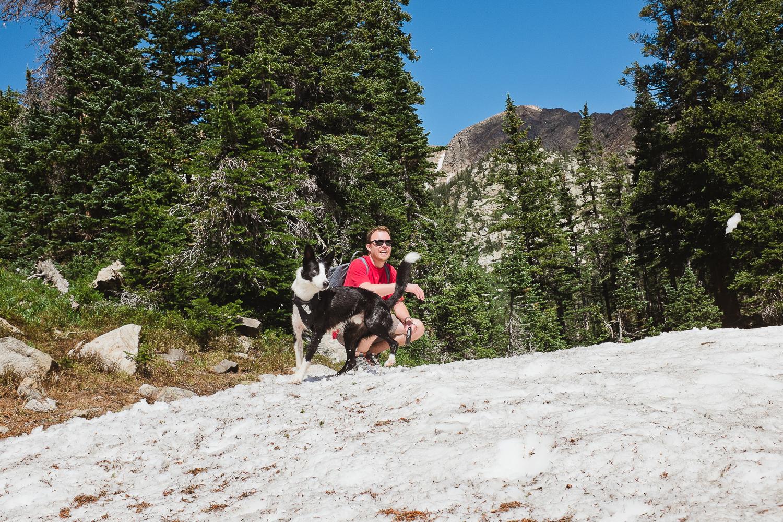 hiking with dogs colorado allison mae_026.jpg