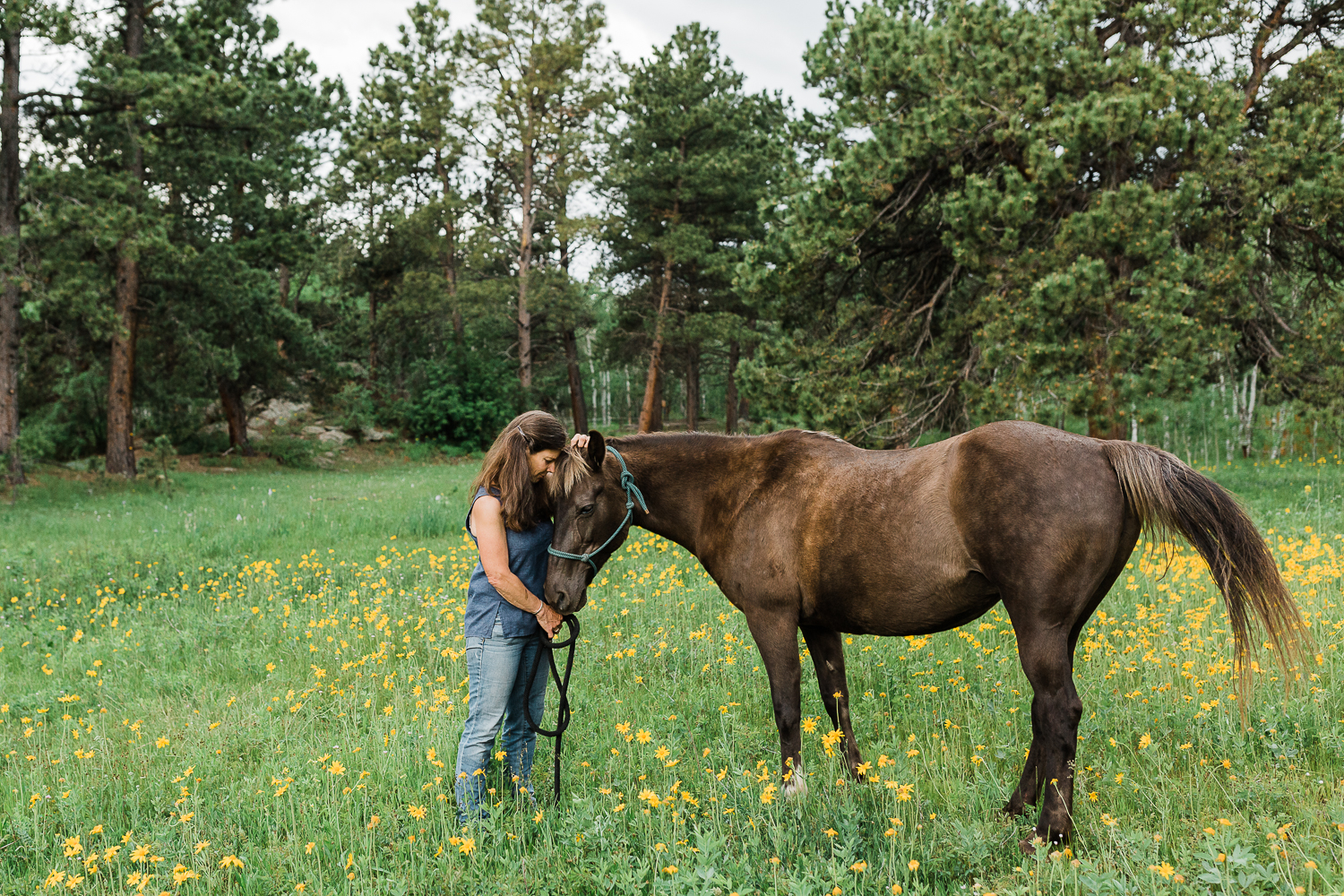 denver_equine_photography_023.jpg