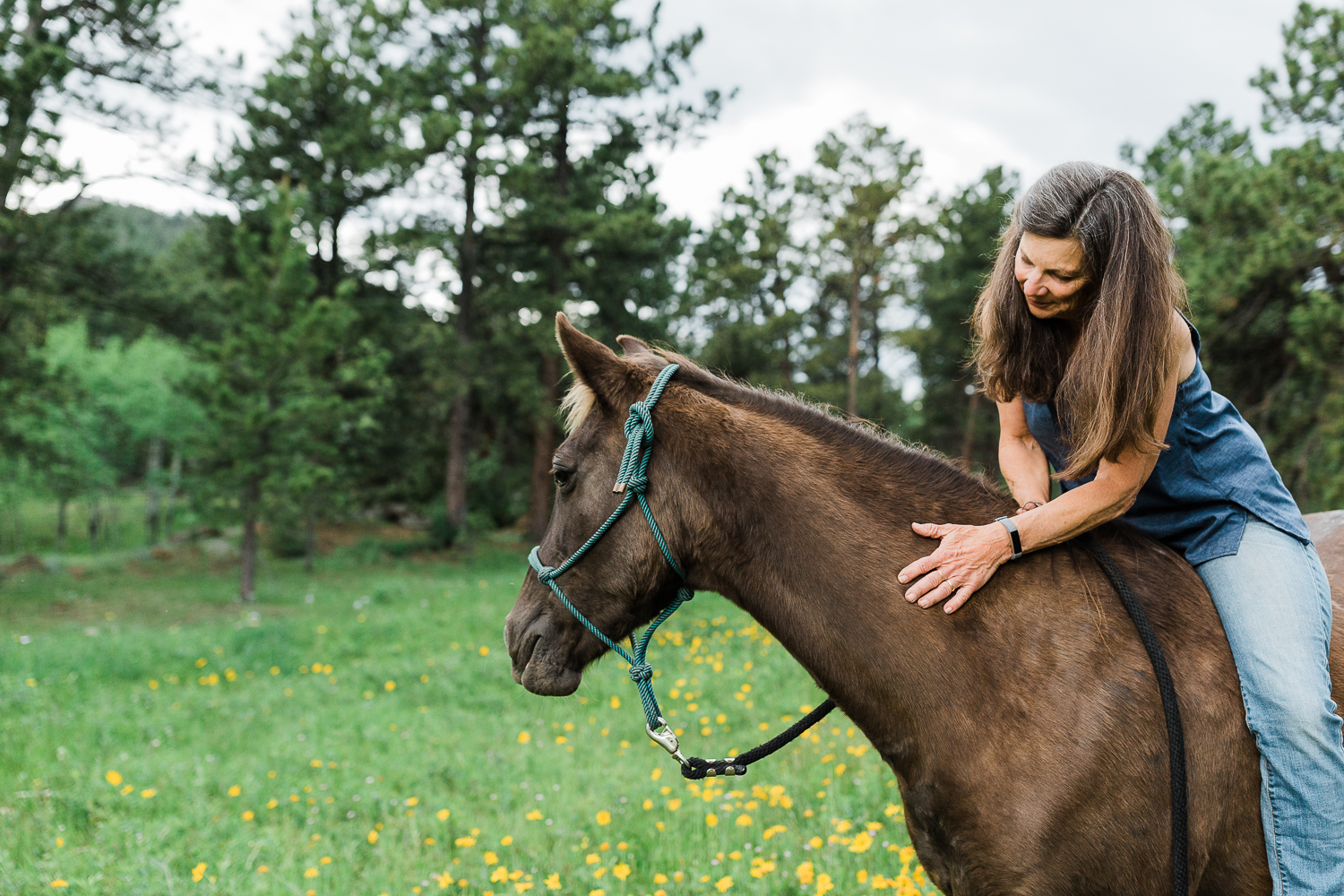denver_equine_photography_026.jpg
