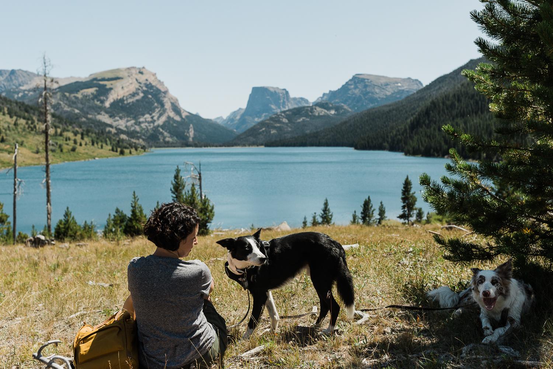 allisonmae dogs bridger wilderness_006.jpg