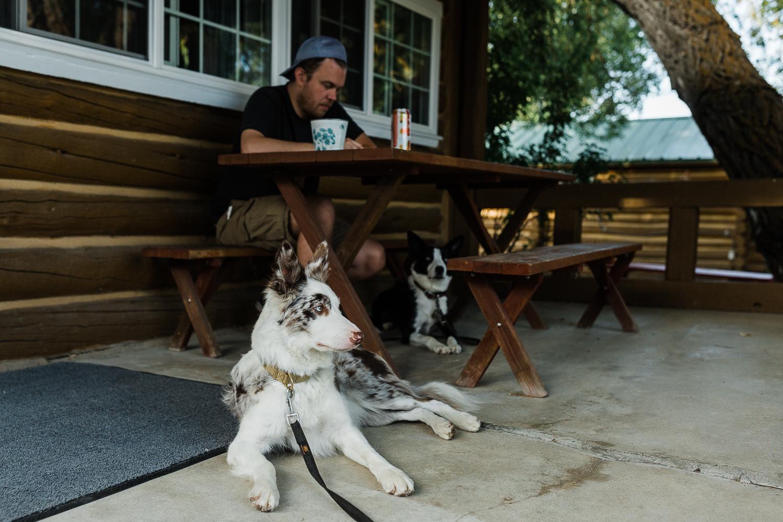 allisonmae dogs bridger wilderness_008.jpg