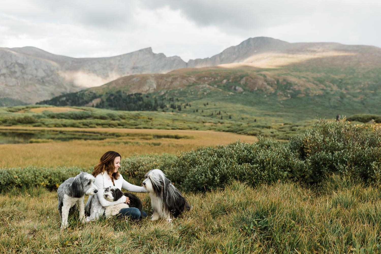 denver mountain dog photos_023.jpg