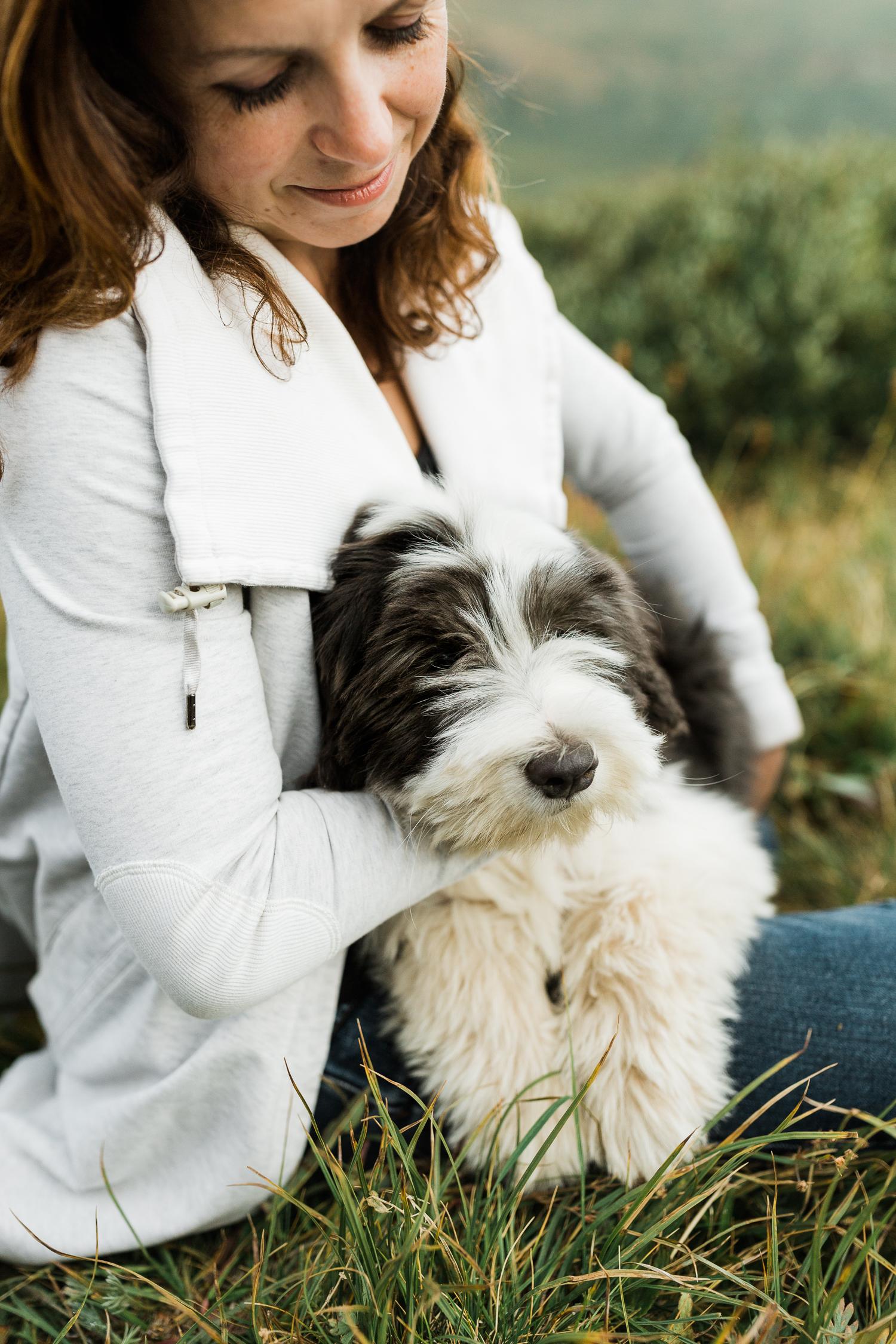 denver mountain dog photos_026.jpg