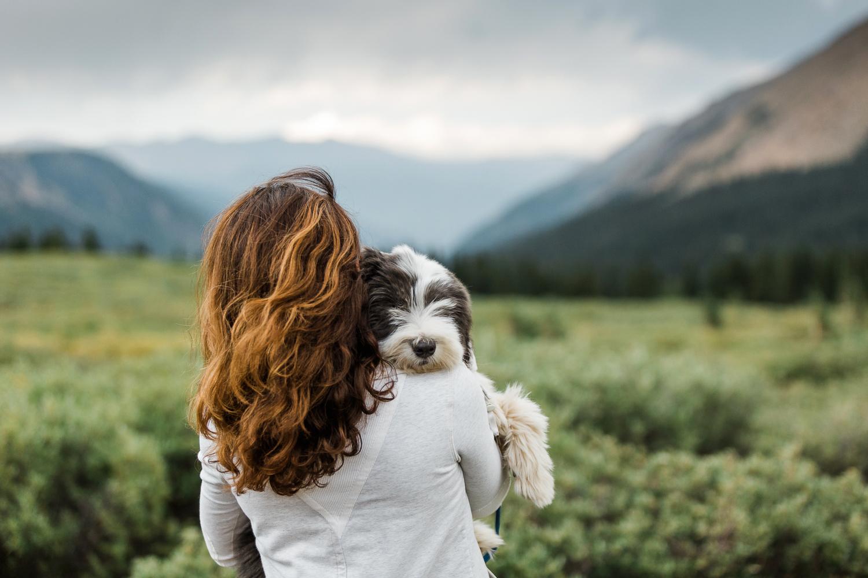 denver mountain dog photos_049.jpg