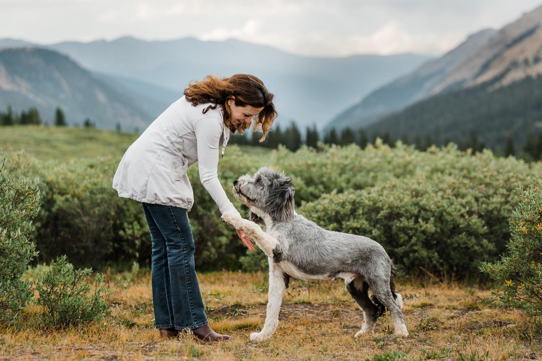 denver mountain dog photos_044.jpg