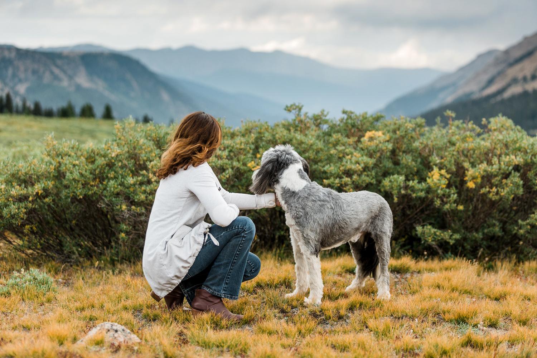 denver mountain dog photos_042.jpg