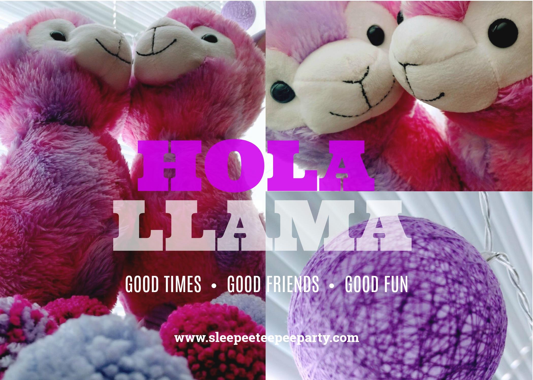 LLAMA THEME.jpg