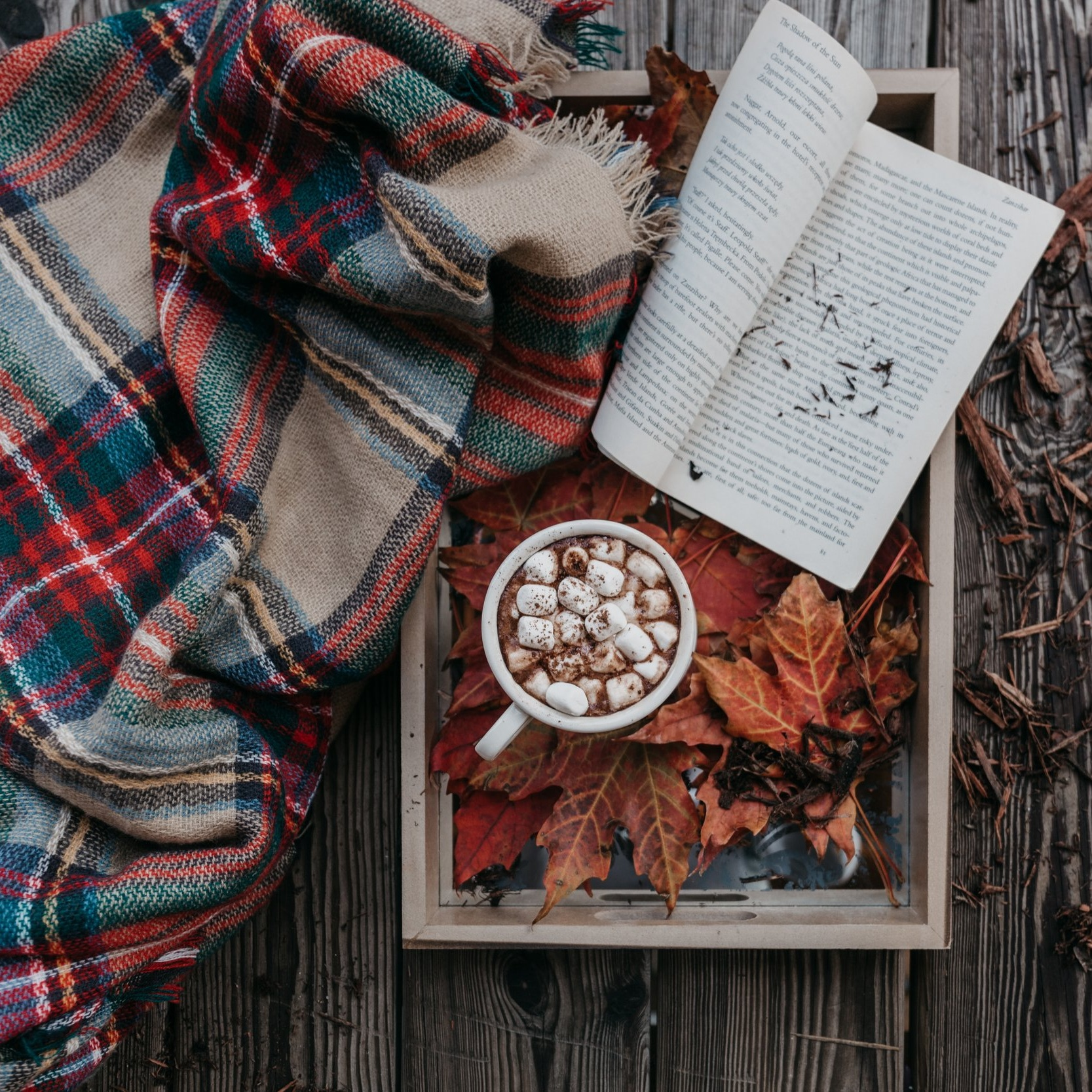 4 - My favorite season is fall and I love nothing more than curling up with a book, a cup of coffee, and a cozy blanket.