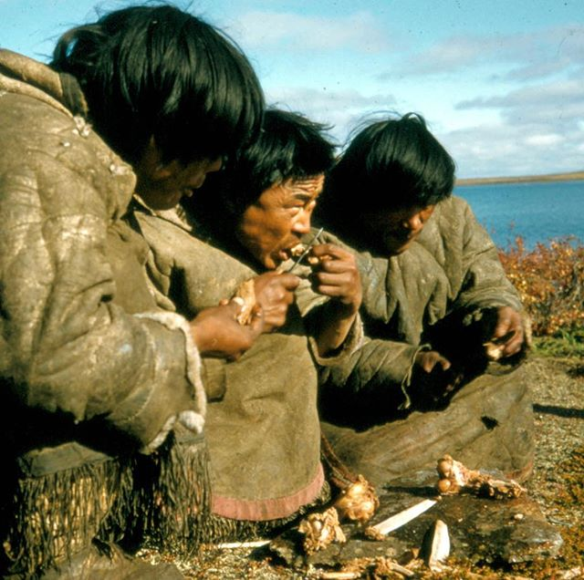 """In our newest film """"Goreau's Ghost, Tom Goreau brings these photos his grandfather took of Innu Communities for LIFE Magazine in the 1950s back to the community."""