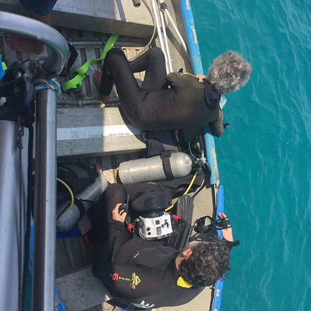 Anything to get the shot! Film crew prepares to dive underwater for a closer look at the Great Barrier Reef.