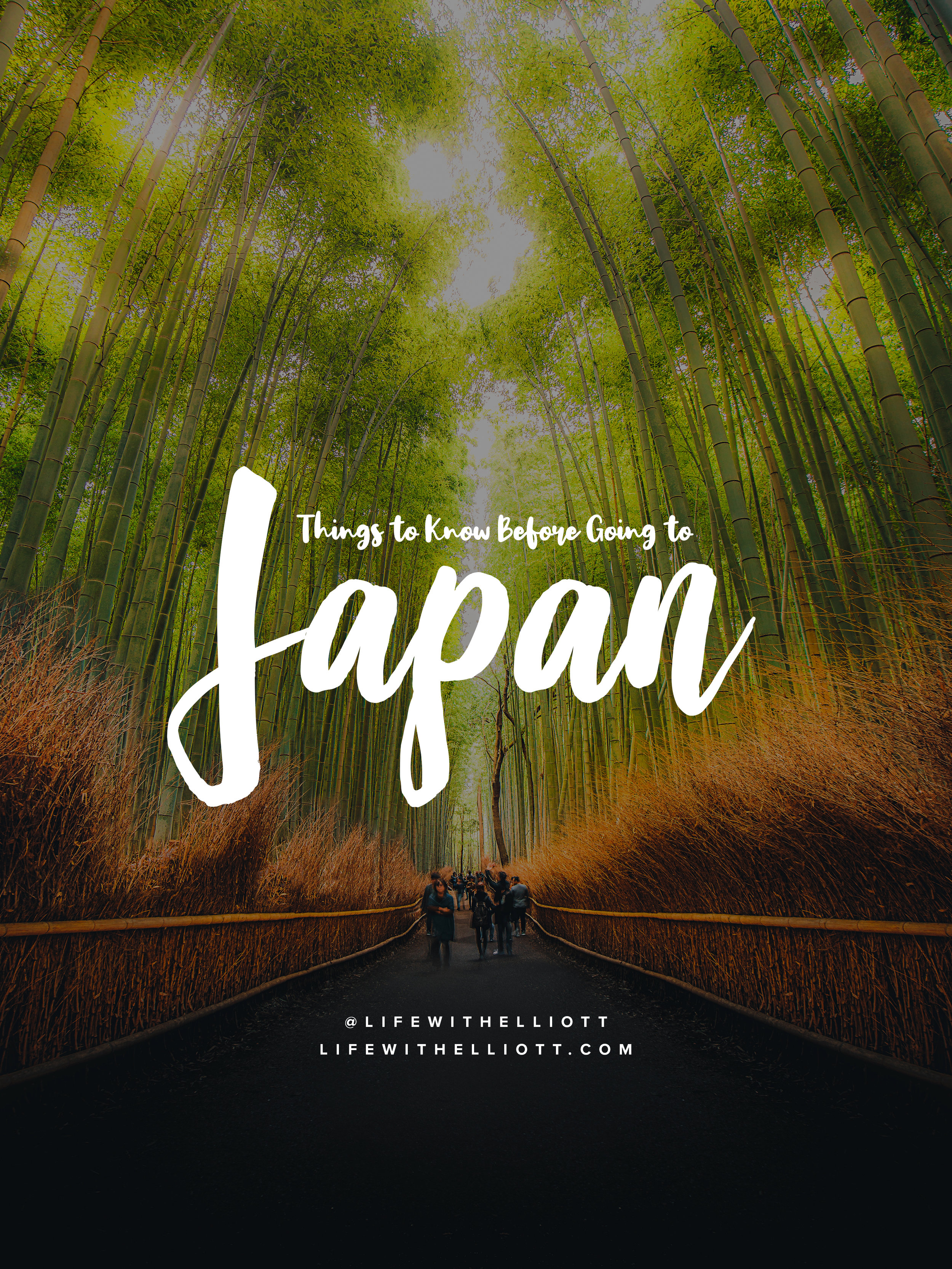 Things to Know Before Going to Japan by LifewithElliott