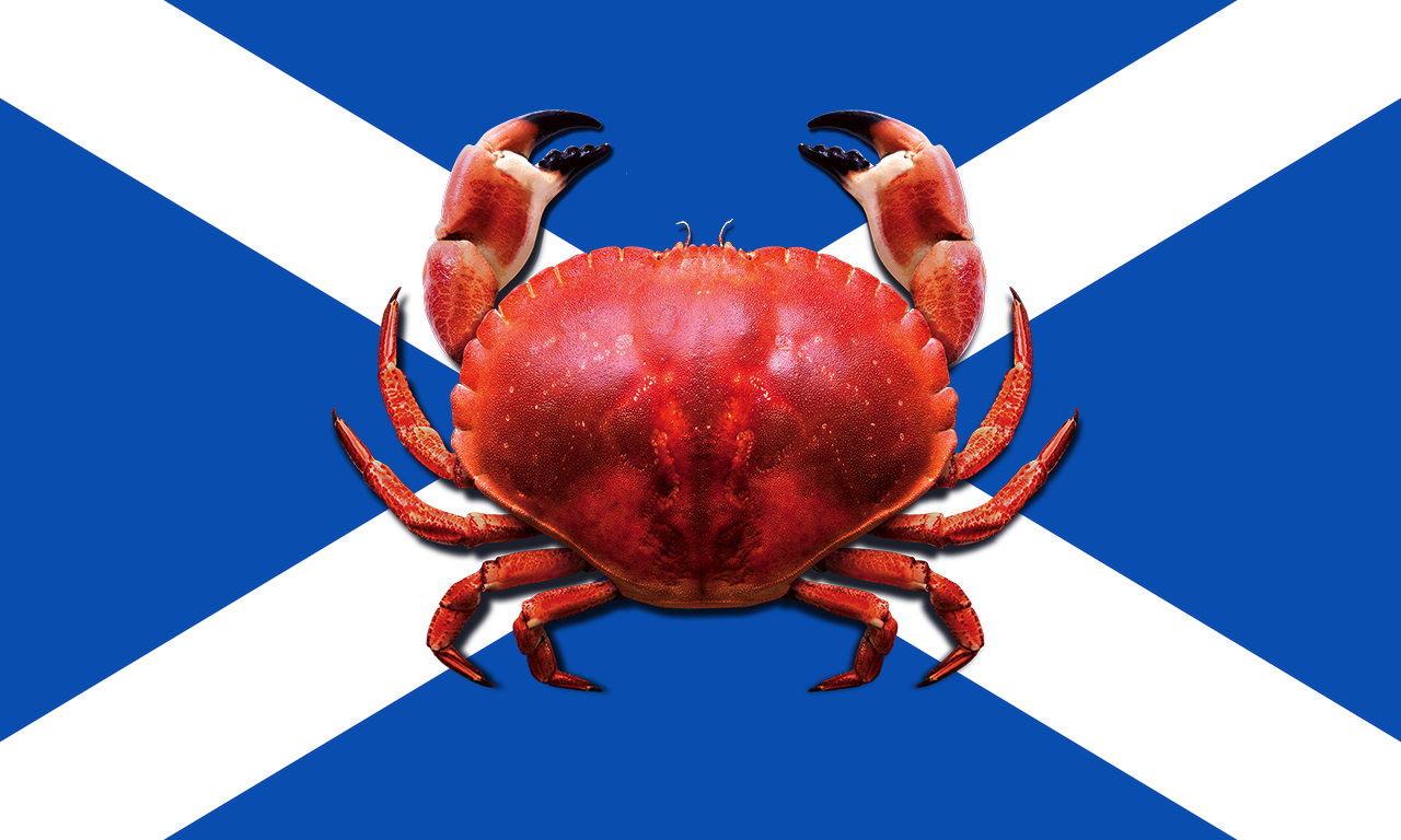 2000px-Flag_of_Scotland.png