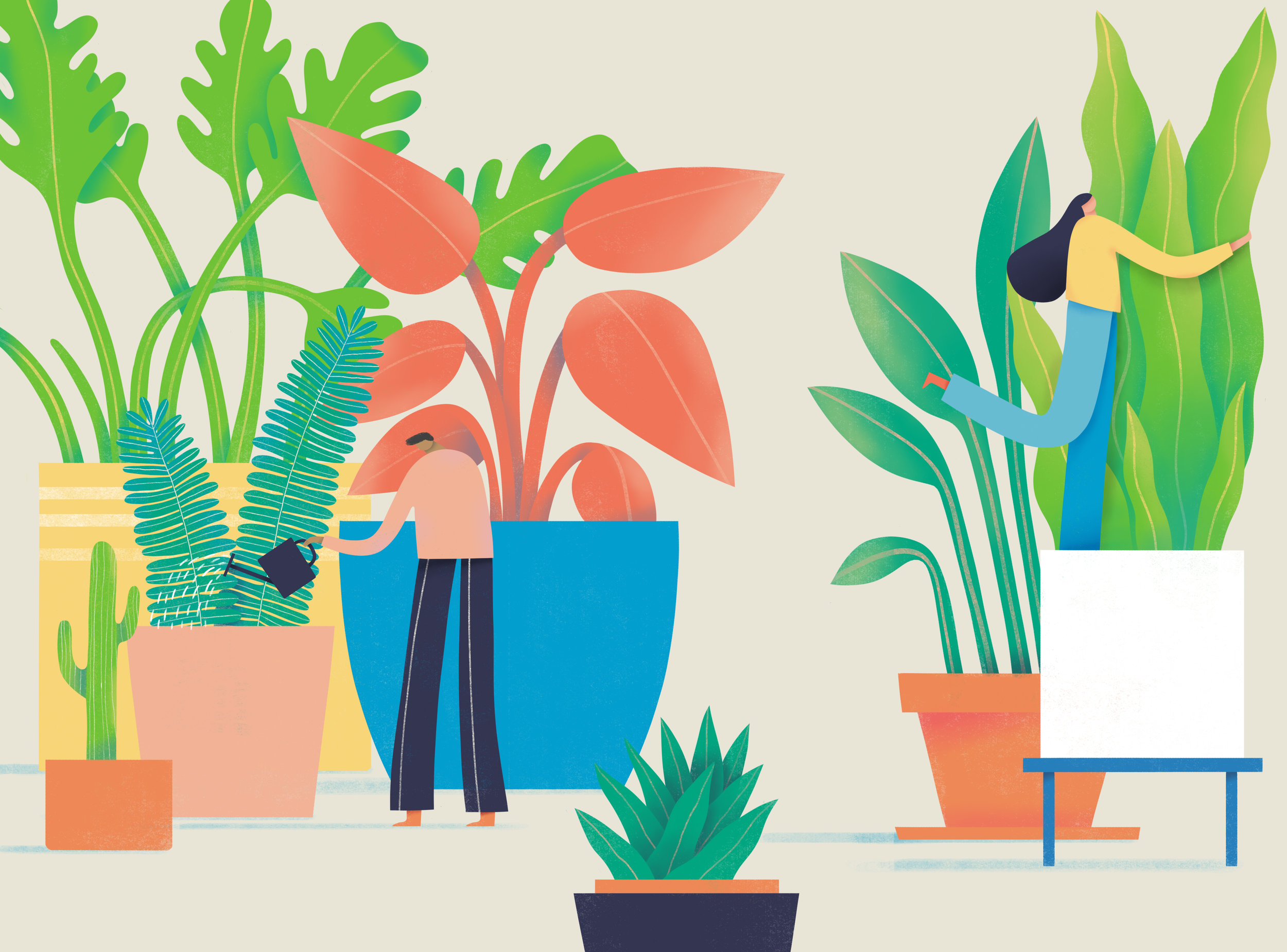 Grow your indoor jungle. - Ever dream of having one of those dreamy houseplant homes? Yes, us too. But before you blow your bank account at that fancy plant shop down the street, we want to help you make sure you know your plants. Like REALLY know your plants. Because there are so many ways to grow your indoor jungle without maxing out your credit card. . .Enroll Now ➝